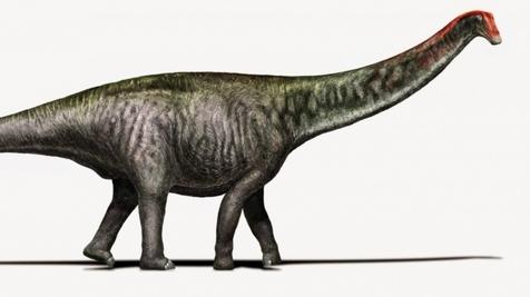 brontosaurus.jpeg